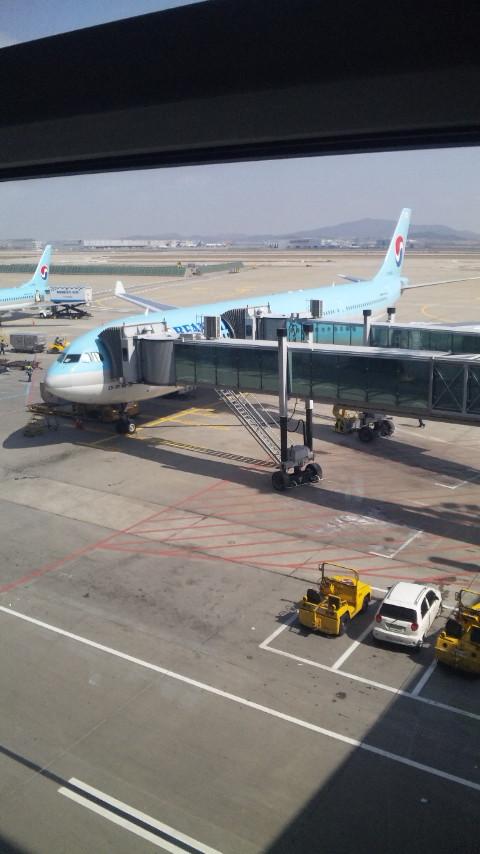 さようなら韓国