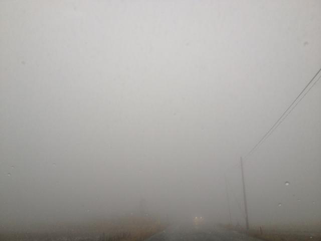 阿蘇の濃霧