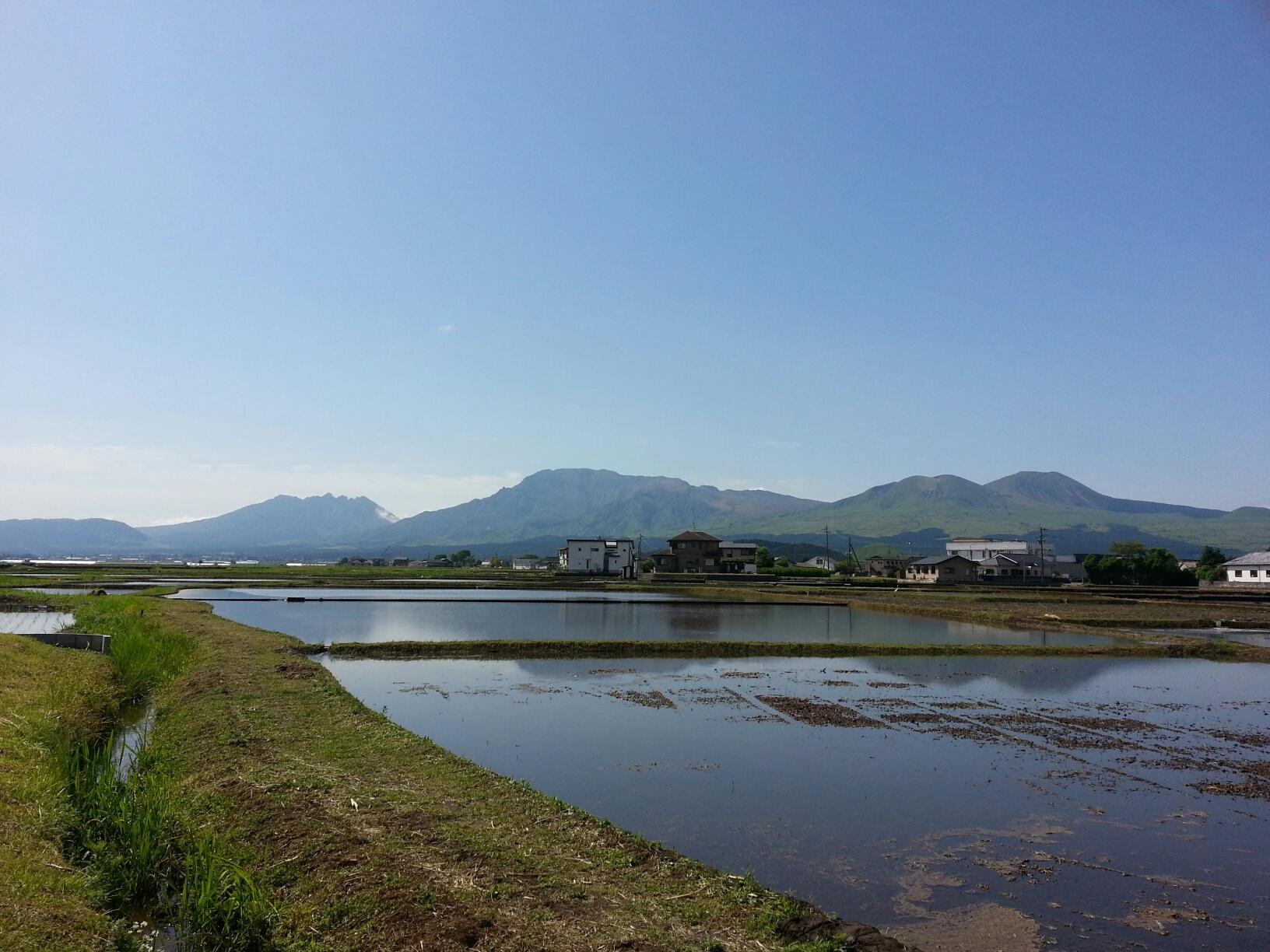 田んぼに水が入りました。